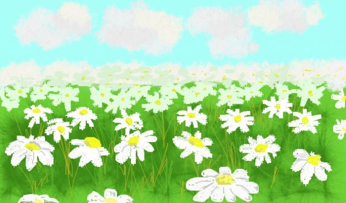 Рисунок ромашкового поля 176