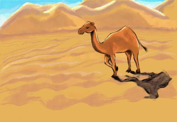рисунки пустыни: