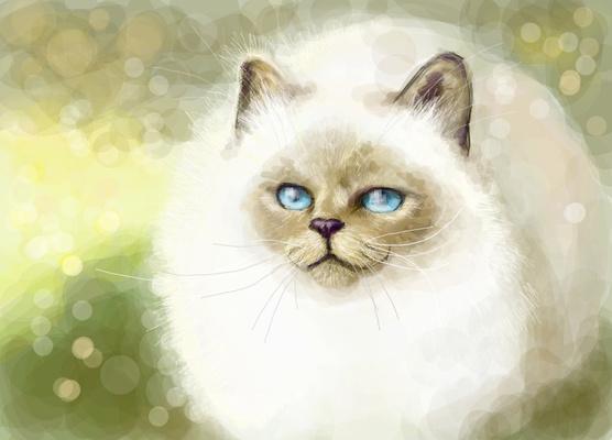 Pussy cat^^
